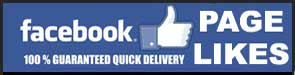 Buy Facebook Page Likes In India